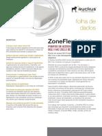Ds Zoneflex r500 Pt