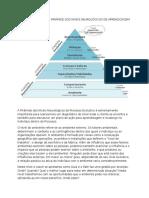 Piramide Dos Niveis Neurologicos