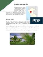 Region San Martin