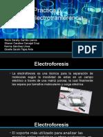 Electroforesis Elisa