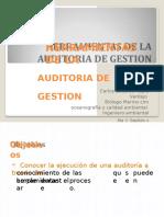 (530812623) Herramientas de La Audioria de Gestión