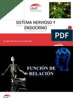 Sistema nervioso y endocrino 2015.pdf