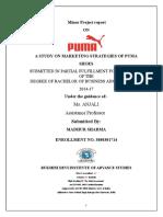Study on Marketing Strategies of Puma Shoes