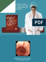 Gastroeterologia