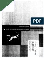 Princípios e regras - Marcelo Neves.pdf