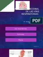 Resumen Anatomofuncional de La via Respiratoria Bien