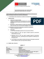 CONVOCATORIA 006-2016-ACOMPAÑANTES PELA- JUNIO.pdf