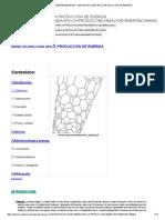 Quimica-Ingenieriaenergia - Nanotecnología en La Producción de Energía