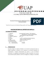 PROYECTO LUNAHUANA JUNIO 2012 UAP.docx
