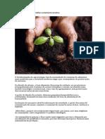 Agroecologia Por Uma Agricultura Sustentável e Lucrativa