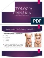 Citologia Urinária