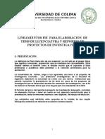 Lineamientos Fie Elaboracion de Tesis Licenciatura 2015