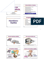 10 - Funciones con regulacion endocrina.pdf