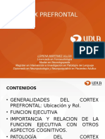Cortex Prefrontal (1)