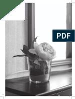 Linguagens e narrativas, desafios feministas - FG10.pdf
