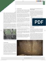 suelos organico.pdf