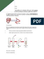 Reconocimiento de Proteínas
