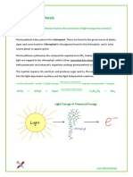 3.8 - Photosynthesis.pdf
