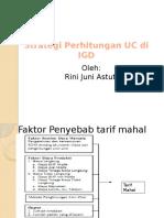 Unit Cost Igd Rini