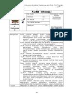 10.SPO Audit Internal