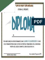 Diploma Alumno Colaborador