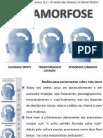aula1-metamorfose1faseinconformidade-140429085140-phpapp02.pdf