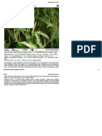 Medicinal Plants of India1.pdf