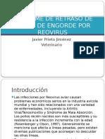 Sindrome Del Retraso de Pollos de Engorde Por Reovirus