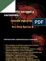 CRANEO PEDIATRICO
