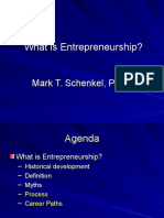 What is entrepreneurship.ppt