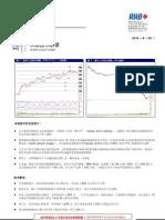 Mandarin Version - Market Technical Reading - Expect More Correction Ahead! - 20/5/2010