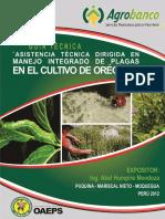 028-a-oregano.pdf