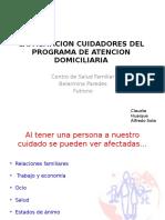 Capacitacion Cuidadores Del Programa de Atencion Domiciliaria