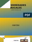 ENFERMEDADES BUCALES