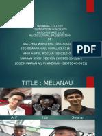 Multicultural Presentation