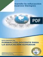 Diplomado Formacion Docente Educacion Superior