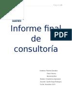 Informe de Consultoria