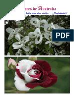 Flores de Australia