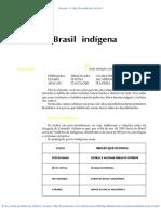 05 O Brasil Indigena