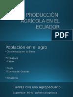 Clase Producción Agrícola