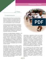 DISEÑO EF 2013.doc