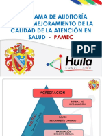 Guia Pamec
