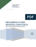 3. Desarrollo Del Sistema LINFÁTICO (1)