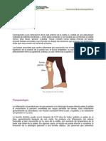 Bursitis_Prepatelar.pdf