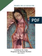 Virgen de Guadalupe - Madre de La Civilización Del Amor