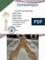 Osteologia-Generalidades-Clasificacion de Los Huesos