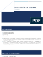 Procesos de Producción de Enzimas