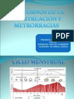20090803_trastornos_de_la_menstruacion_leonardo_cortes.ppt