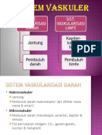 5.Sistem Vaskuler