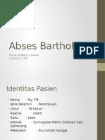 Abses Bartholin